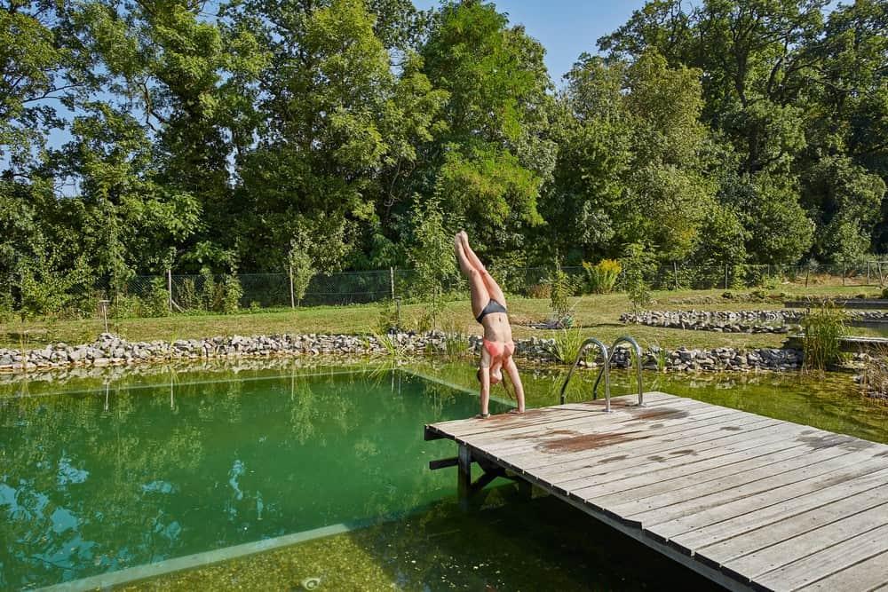Naturpool Schwimmteich